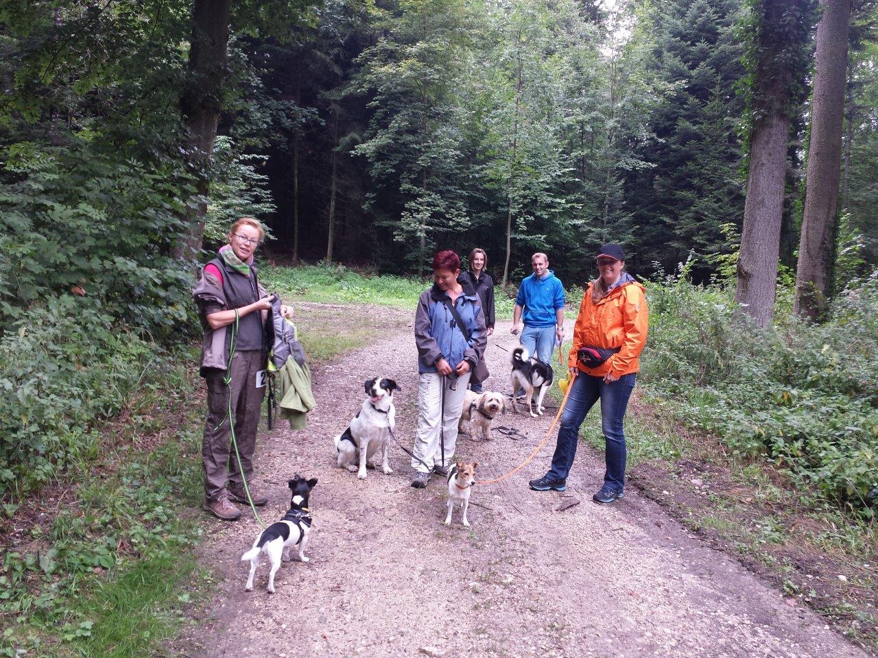 Micaela mit Lucy, Maya und Birgit, Boncuk, Anja mit Lilou & Flo, Joya & Marlen