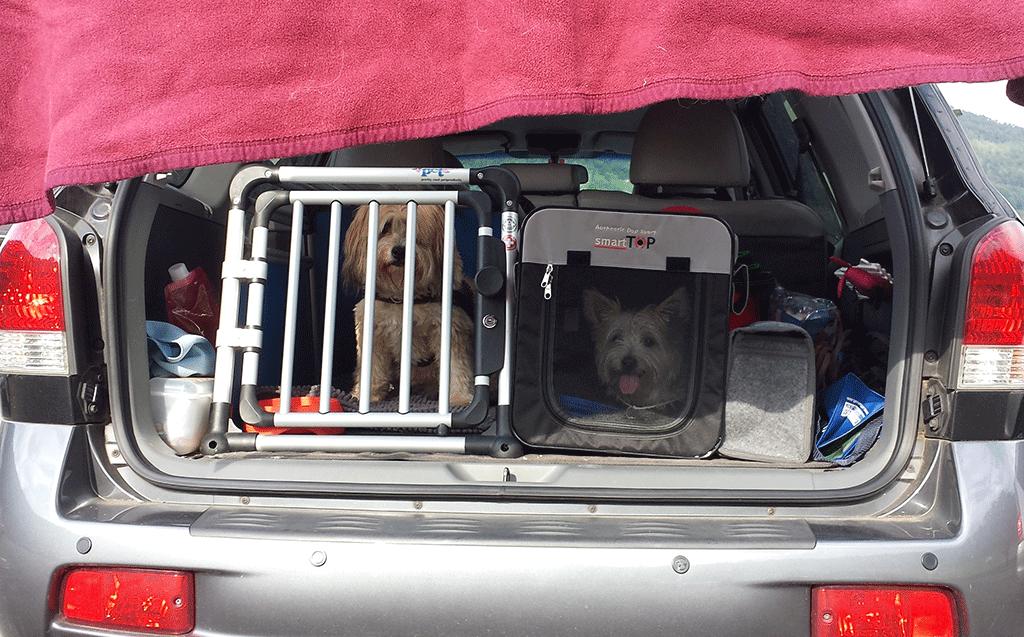 Nach dem Military müssen die beiden im Auto warten.