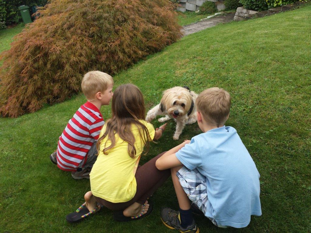 Bonsch liebt Kinder und die Kinder lieben sie :-)