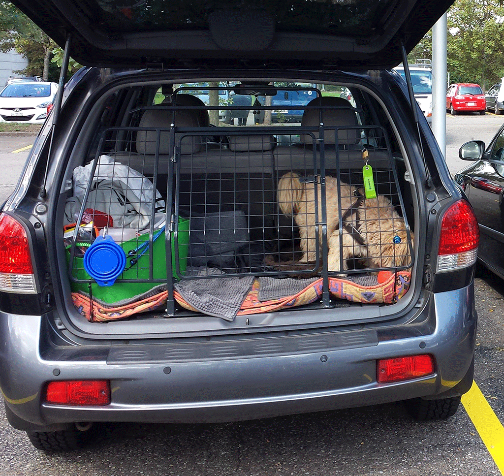 Das neue Hunde-Gitter