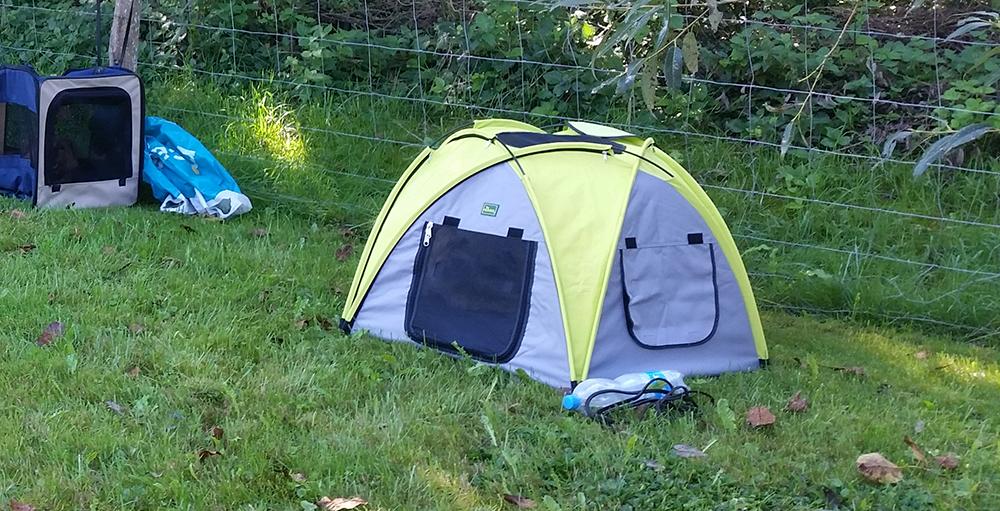 Das neue Hunde-Zelt
