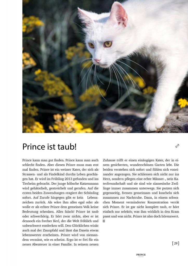 Prince im TbB-Jubiläumsbuch